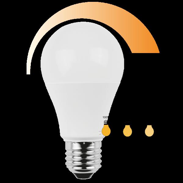 LED Lampe Birnenform 10 Watt 3in1 Dimmer warmweiß E27