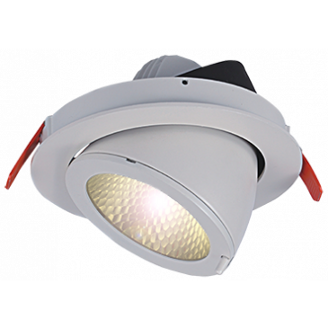 LED Downlight 25 Watt warmweiß COB