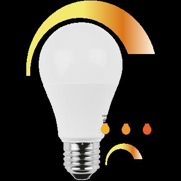 LED Lampe Birnenform 10 Watt WW Dim-to-warm E27